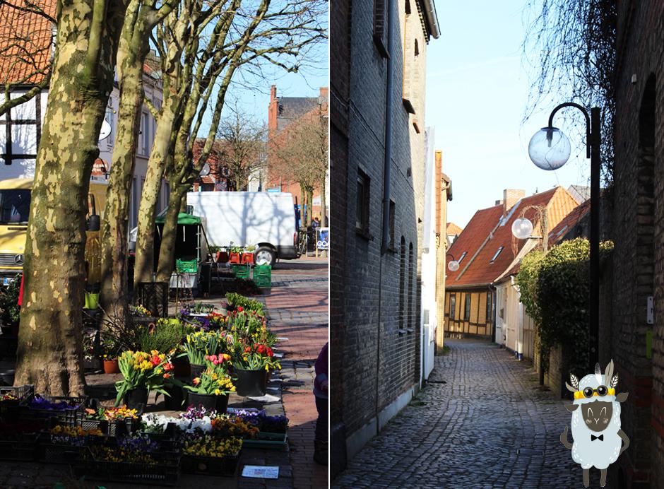 KaN_Eckernförde_Familienausflug_SchafLagerfeld_Innenstadt_2_Fotos_(c)www.kielamnil.de