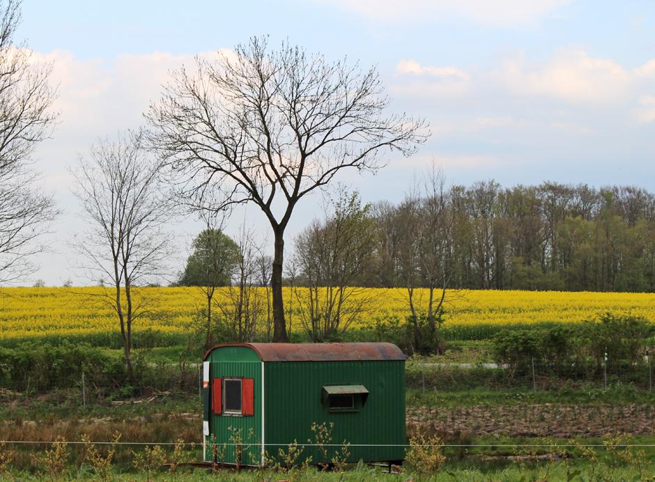 KaN_Ein AckerAmMeer_GutBirkenmoor_Mai_Foto_Bauwagen_(c)www.kielamnil.de