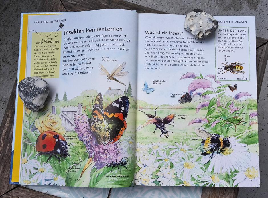 KaN_BücherTipps_ImGartenNaturMitKindern_MeinNaturerlebnisbuch